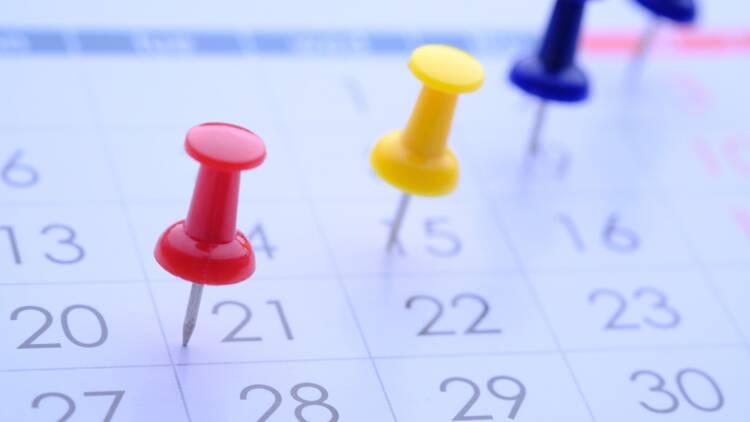 Retraite minimum, pension de réversion… à quelles dates pourraient entrer en vigueur les mesures de la réforme ?