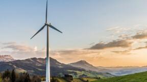 Dans l'Hérault, un parc éolien doit être détruit pour protéger des oiseaux rares