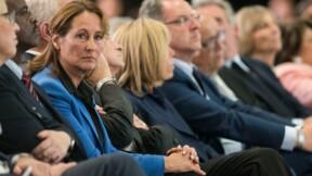 Affaire Ségolène Royal : la liste des 21 ambassadeurs thématiques