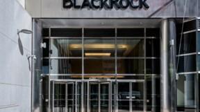BlackRock empêche-t-il les entreprises de lutter pour le climat ?