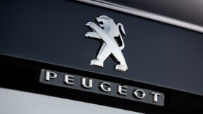 Peugeot et Dacia (Renault) tirent leur épingle du jeu dans un marché auto en berne