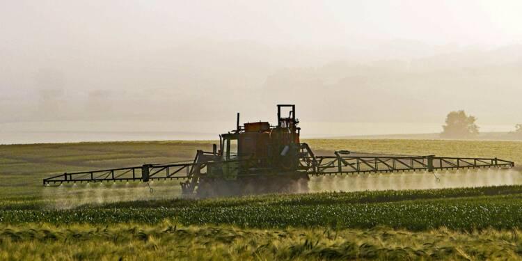 Pesticides : les vrais dangers... et les fausses peurs !