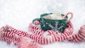 Brumal, frimas, nivéal... connaissez vous le sens de ces mots de l'hiver?