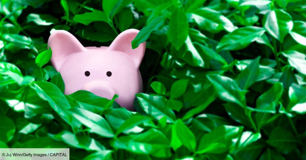 Assurance vie, Livret A... comment récupérer votre épargne oubliée