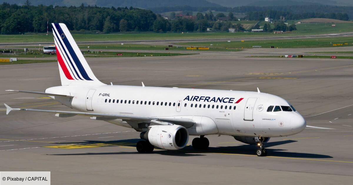 Un vol Air France retardé à cause d'un chien caché dans un sac plastique