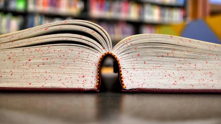Il se hisse en tête des ventes de romans en France