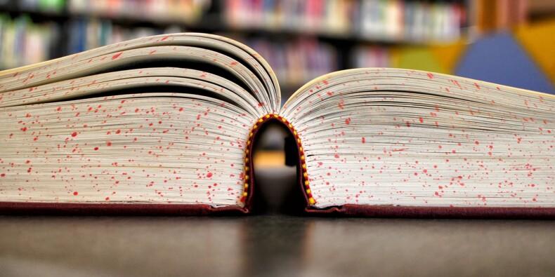 Librairies indépendantes : l'Etat va prendre à sa charge les frais d'envoi