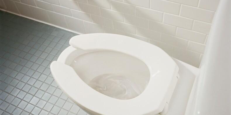 Une application vous permet de noter l'état des WC des bars et restaurants