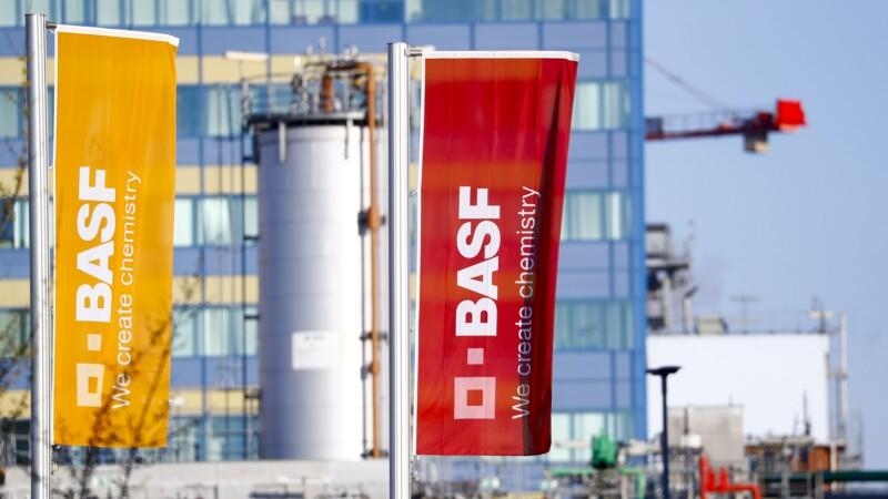 Alternative aux pesticides : BASF va tester les produits Amoéba, qui s'envole en Bourse