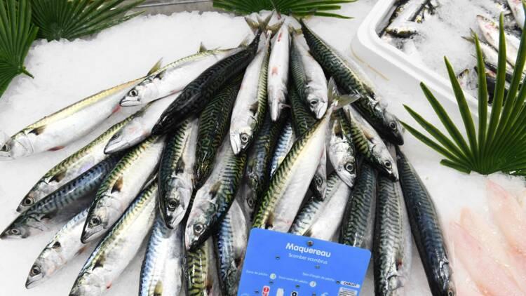 Les poissonniers, des artisans pris entre deux eaux