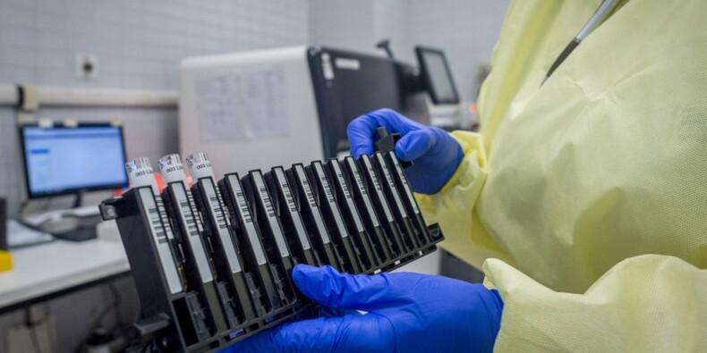 Un labo chinois découvre un vaccin efficace sur les singes