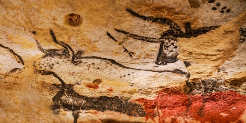 L'étonnante découverte faite au plafond d'une grotte de Lozère