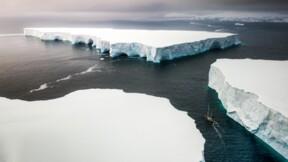 Pourquoi la glace de l'Antarctique devient-elle verte ?