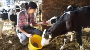 Retraite : voilà à quoi pourrait ressembler le futur minimum de pension pour les agriculteurs