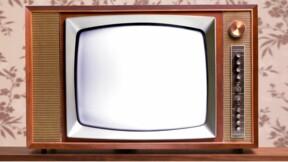 Télétravailler, téléconsultation : ces nouveaux mots qui commencent par télé-