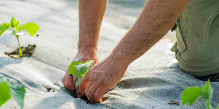 Retraite agricole : une pension minimum à 85% du Smic, mais pas avant 2022
