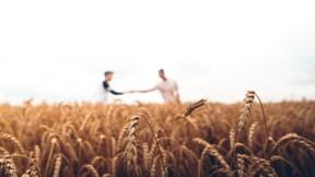 Après les salariés et les chômeurs, Action Logement va verser une aide de 150 euros aux saisonniers agricoles