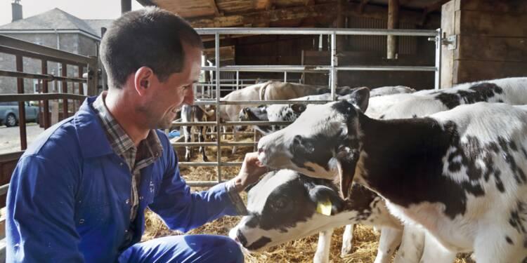 Revalorisation des retraites des agriculteurs : la hausse à 85% du Smic définitivement adoptée
