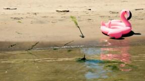 Les voleurs piégés par l'achat d'une bouée flamant rose