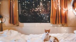 Un hôtel parisien propose des chambres dans des camping-cars cet été