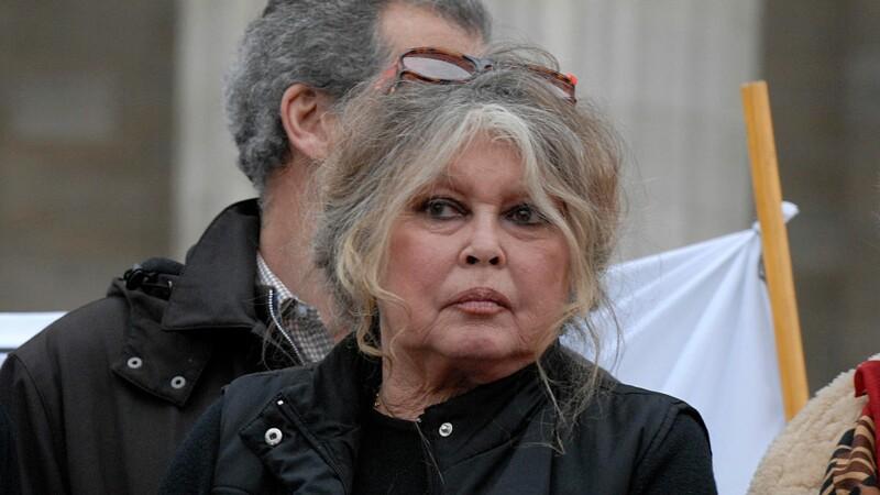 Le coup de gueule de Brigitte Bardot contre une agence immobilière