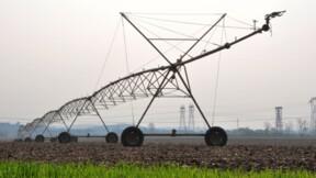 Les risques de pandémie accrus par l'agriculture intensive ?