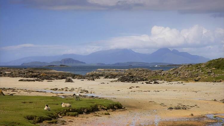 Une petite île écossaise cherche de nouveaux pensionnaires