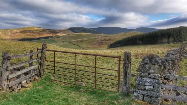 Écosse : il se balade avec son détecteur de métaux et fait une incroyable découverte