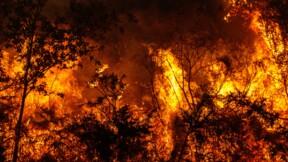 3.000 personnes évacuées après un incendie causé par une fête de famille