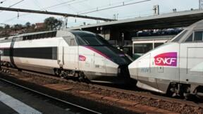 Un passager qui refusait de porter un masque descendu de force du TGV