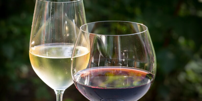 Foire aux vins 2020 chez Biocoop et La Vignery : notre sélection de bouteilles