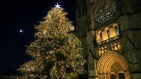 Il n'y aura pas de sapin de Noël cette année à Bordeaux