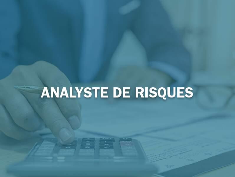 Analyste de risques