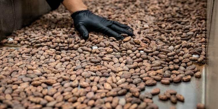 Cémoi, le roi du chocolat, cherche des investisseurs