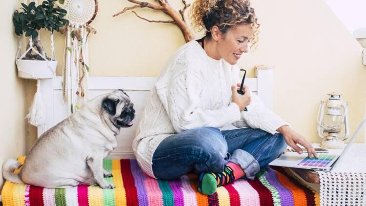 La première assurance animaux 100% en ligne est disponible