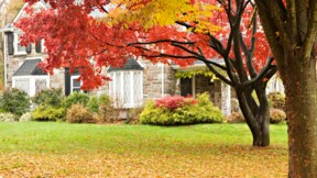 Patrimoine immobilier : définition et fiscalité
