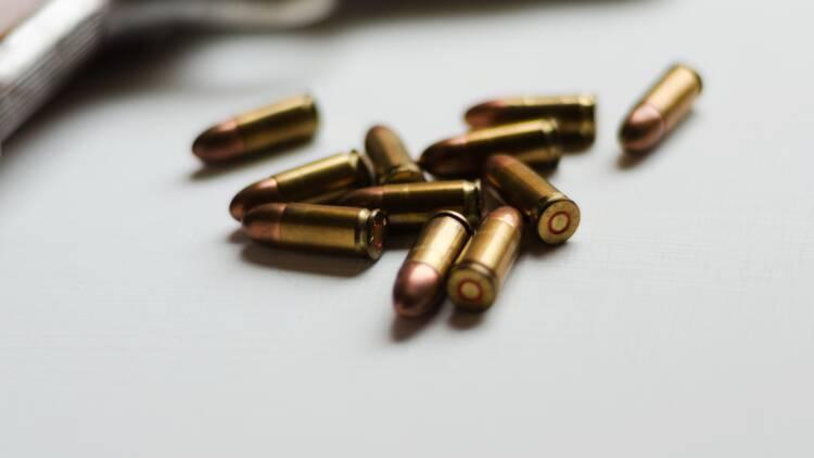 Carte européenne d'armes à feu : législations et démarches