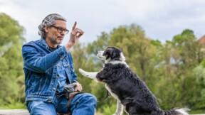 Éducateur canin : formation et compétences