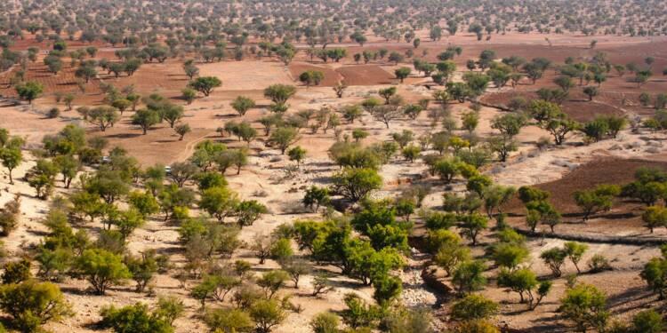 Maroc : l'agriculture, un pilier de l'économie menacé par le manque d'eau