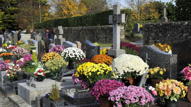 Verbalisé pour avoir téléphoné au volant en allant fleurir la tombe de son père