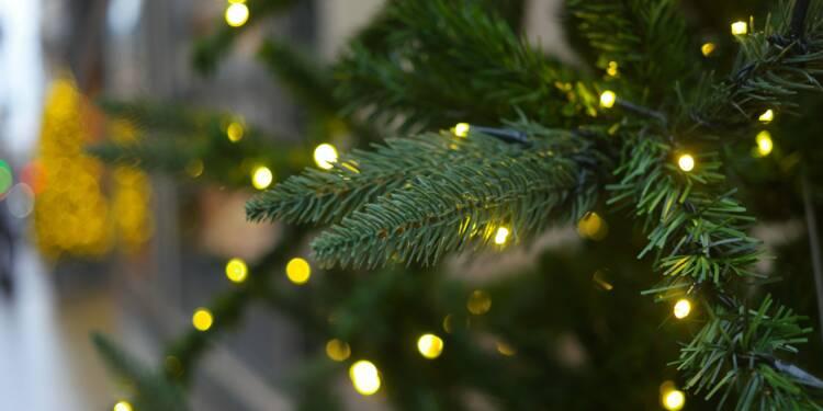 Va-t-on manquer de sapins pour Noël à cause du confinement ?