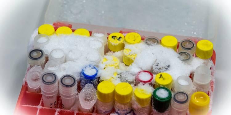 Vaccin Covid-19 : la course aux supercongélateurs