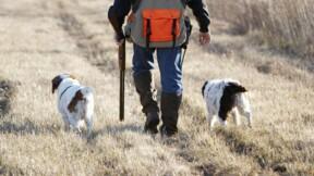 Les chasseurs se retrouvent pour manger et boire, le préfet interdit la pratique dans deux communes