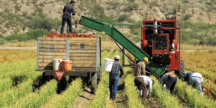 Babyloan Impact : jusqu'à 5% de rendement en prêtant aux PME de pays du Sud