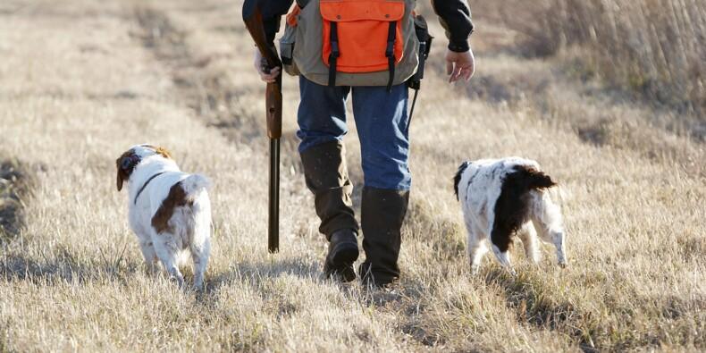 Dans le Doubs, six chasseurs verbalisés après avoir traqué des sangliers en 4x4