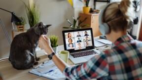 Visioconférence : quand la vie privée s'invite aux réunions à distance