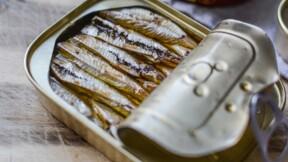 Connétable : leurs sardines bretonnes sont toujours triées à la main
