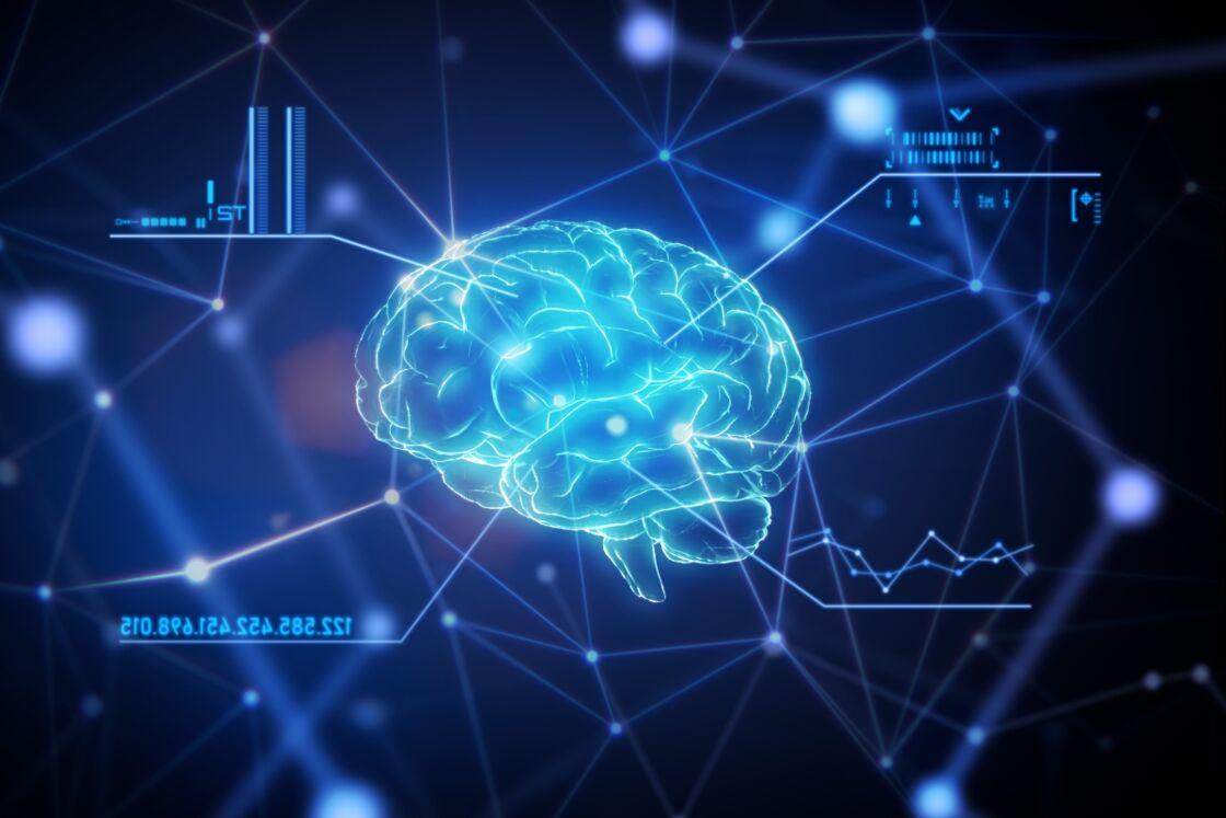 Studie deckt auf: Es gibt eine Idealgröße für unser Gehirn