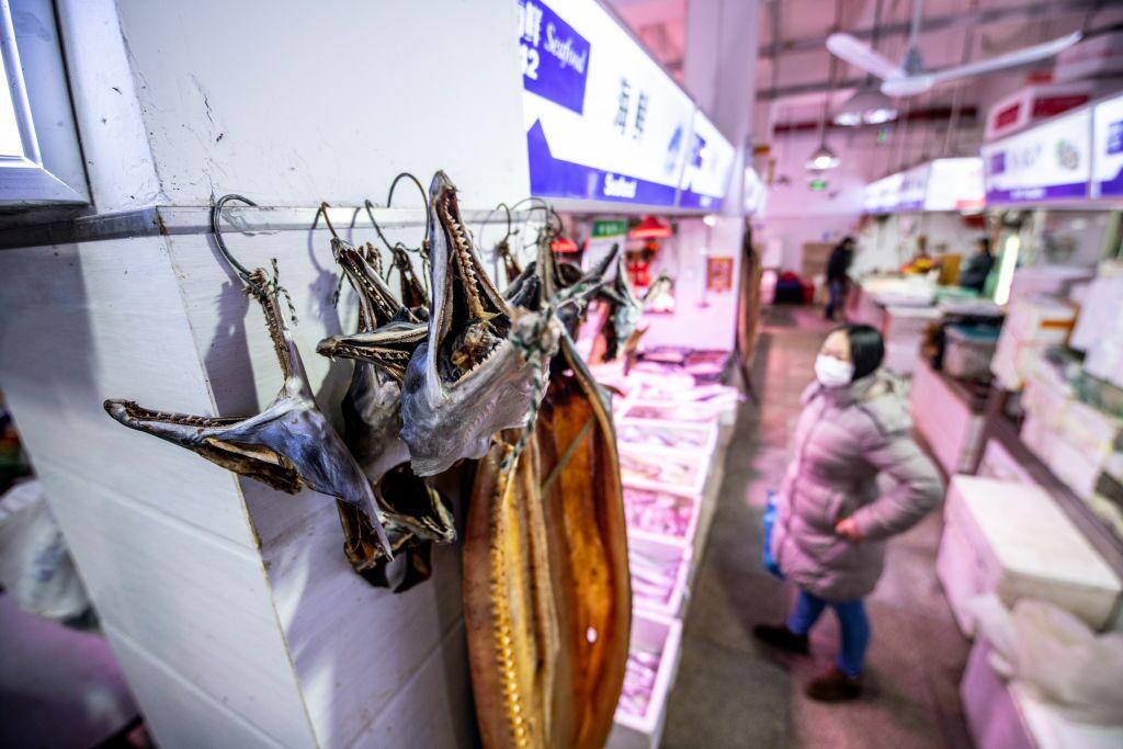 Se vuelven a vender murciélagos y otros animales en los mercados chinos