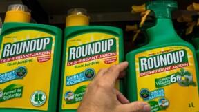 Glyphosate : le Roundup Pro 360 de Monsanto (Bayer) interdit